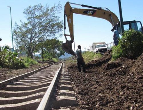 Fonatur y constructores se organizan para tramos 6 y 7 del Tren Maya