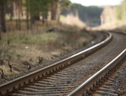 Lanzarán 3 licitaciones del Tren Maya este año