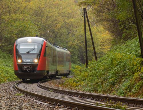 Tren Maya: licitación de ingeniería ajusta fechas