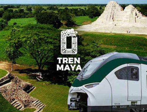 Fonatur lanza licitaciones para adquirir convoyes y rieles del Tren Maya
