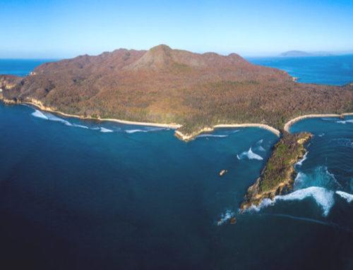 Plan turístico y ecológico en las Islas Marías