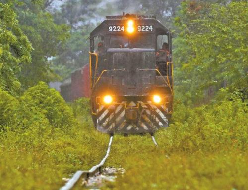 Van 19 mil mdp a carretera de apoyo para el Tren Maya