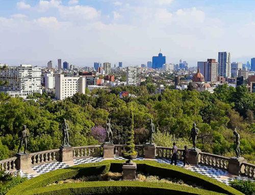 Construirán calzadas flotantes para unir dos secciones del Bosque de Chapultepec