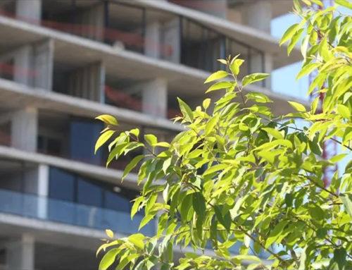 Construcción de vivienda aumenta 12% respecto a 2020: Canadevi